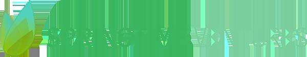 Springtime Ventures Logo